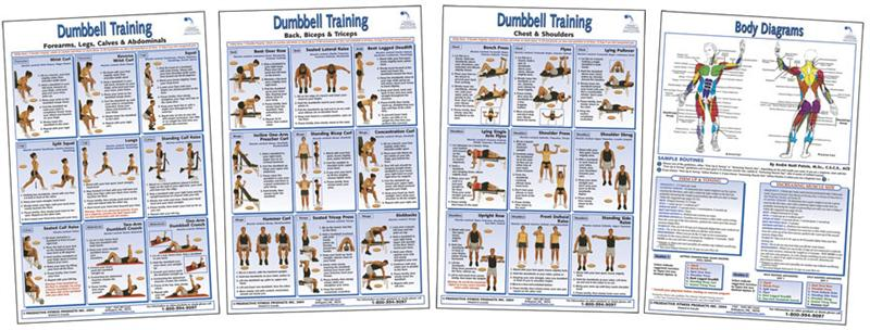 Gym Training Program Template