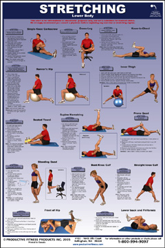 stretching  lower body laminated